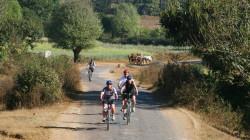 Mandalay Biking Tour 2